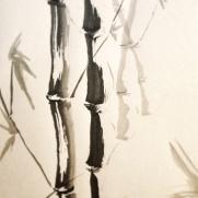Bamboo stuff.